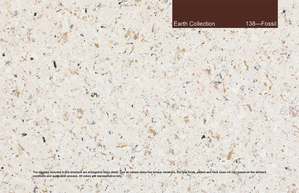 Earth Collection - 138 - Fossil